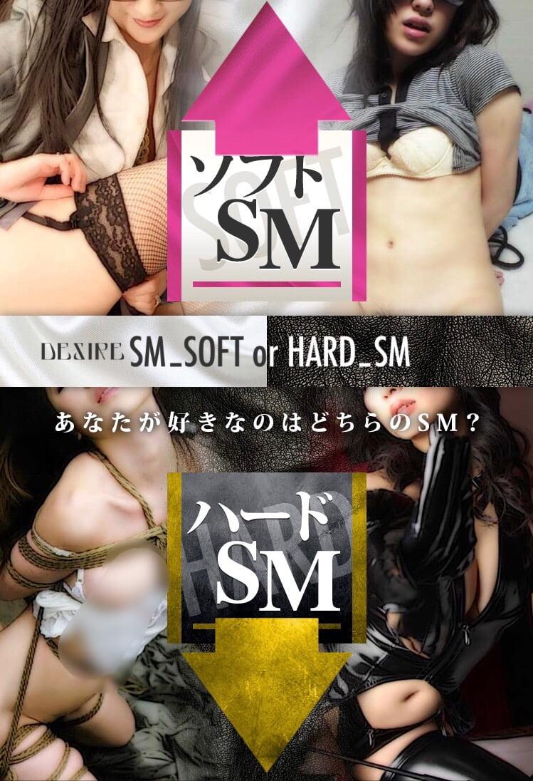 ソフトSMとハードSMの評価レビュー